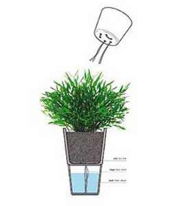 self watering flower pot diagram