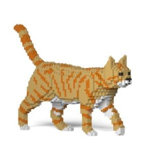 Jekca ginger cat walking