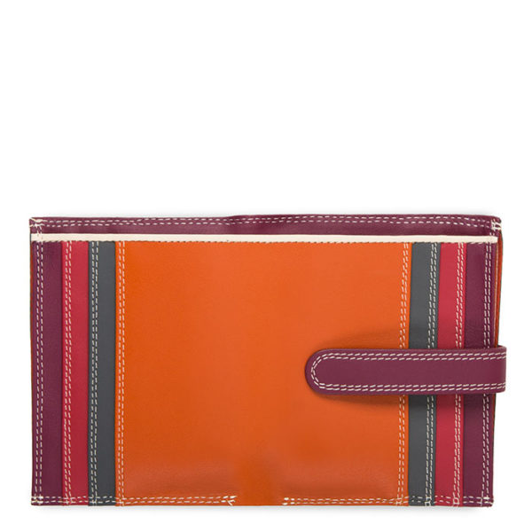 multi coloured wallet